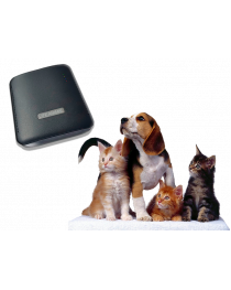 Life Animal  portable  device Webwellness BRT for cats dogs horses