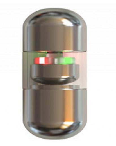 Kremlin Photon  Sputnik capsule  tablet pill bipolar stimulator of GIT  against parasites