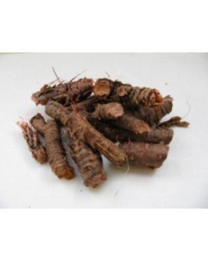 Wild Siberian RHODIOLA ROSEA root 200 gm = 7 oz