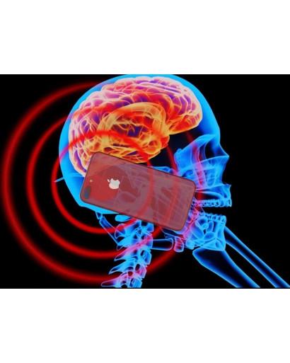 Spinor protection harmful radiation Wi-Fi EMF torsion field neutralizer